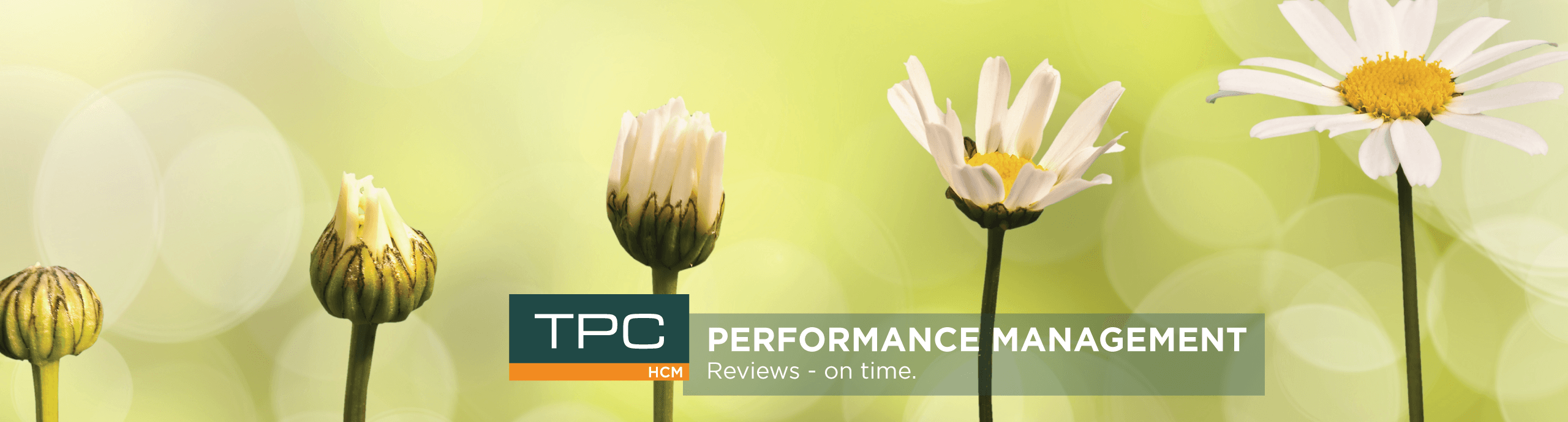 Performance Management Software| Isolved Performance Review